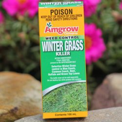 Amgrow-Weed-Control-Winter-Grass-Killer-100ml
