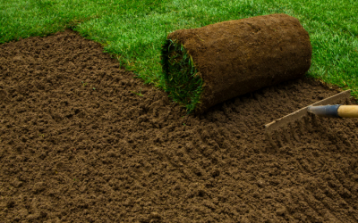 Your Go-To Guide for Laying New Turf