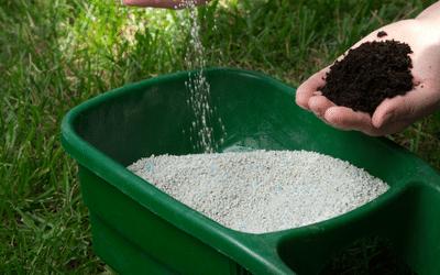 Avoid Lawn Burn from Fertiliser This Summer