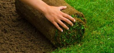 What's Involved in Laying Down Turf?