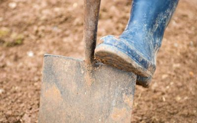 Starting with The Soil: Laying Turf Preparation