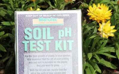Getting the Right Lawn pH Levels