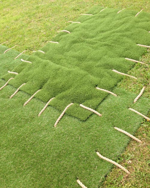 patch up your lawn