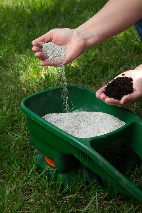 fertilise in spring