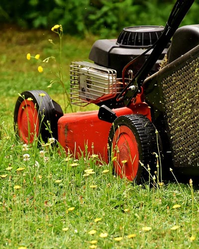 Mowing as Weed Control