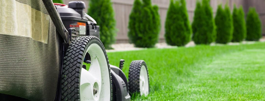 Is Mowing an Effective Weed Control Method?