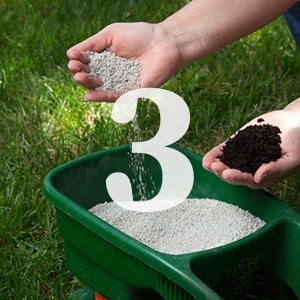Lawn Care tip 3