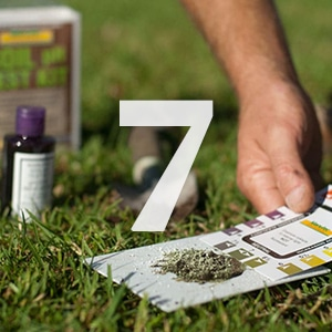 Lawn Care tip 7
