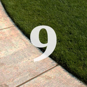 Lawn Care tip 9