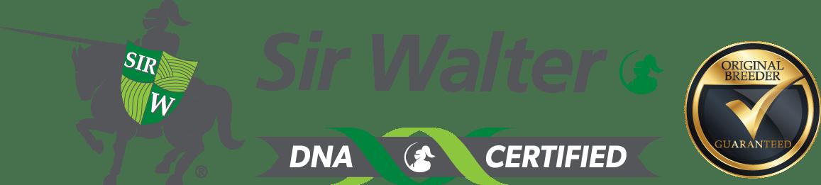 Sir Walter Turf DNA Certified LSA
