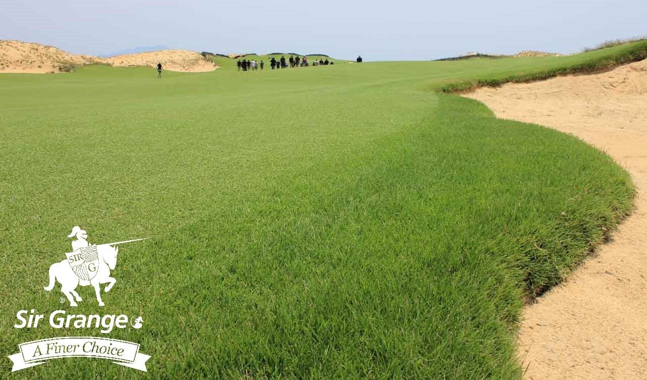 Hoiana Shores Golf Course - Sir Grange Zoysia fairways