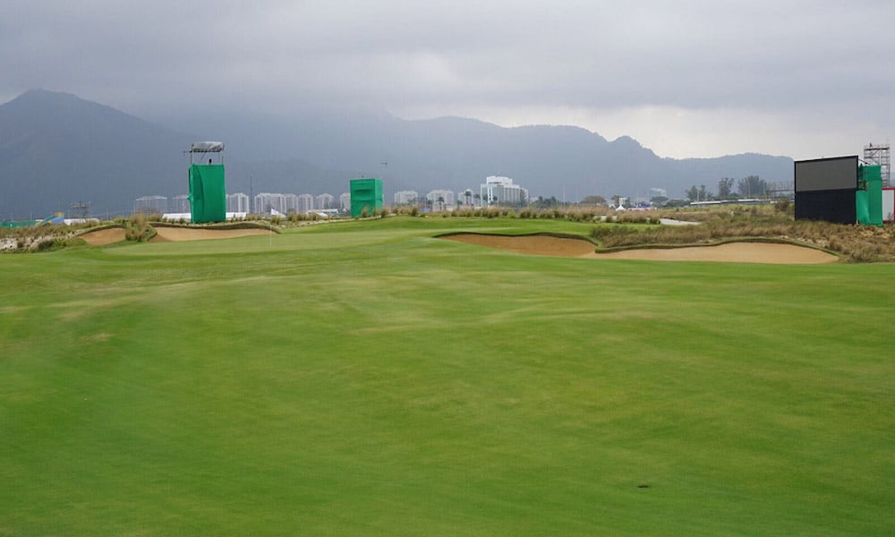 Sir Grange Zoysia was developed for the golf industry.