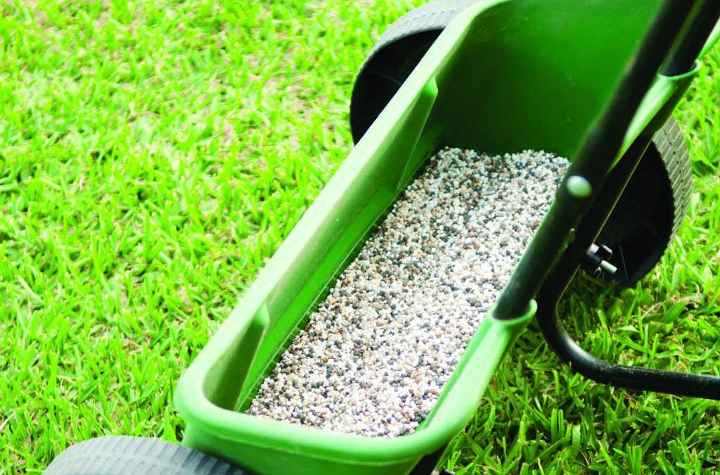 How to Avoid Common Lawn Fertiliser Mistakes