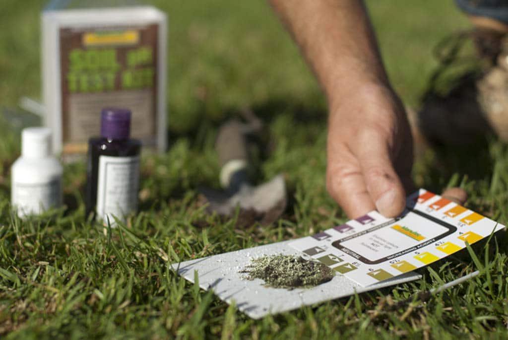 testing your soil pH level