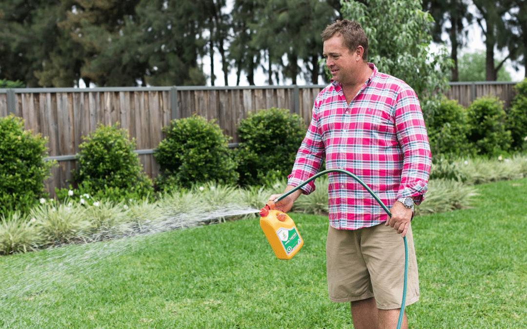 Best Liquid Lawn Fertiliser