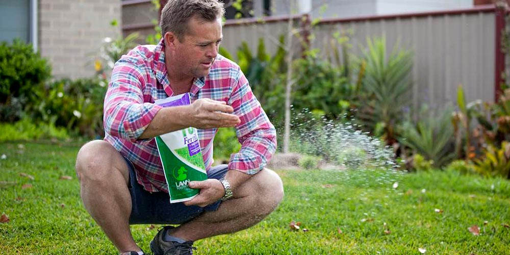 How Do You Fertilise A Lawn?