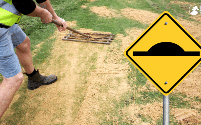 Top Dressing Your Lawn – Step by Step Guide