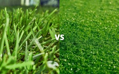 Artificial Grass vs Real Grass