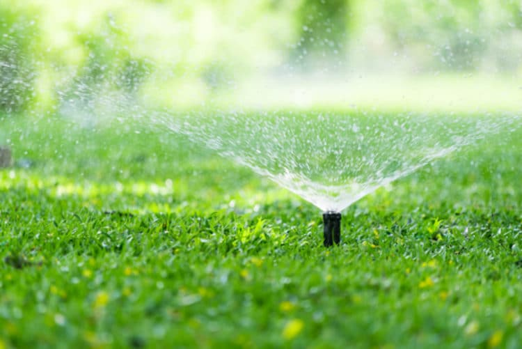 Sprinkler System on Grass