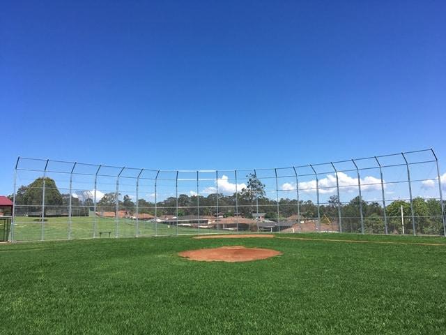 Baseball pitch showing turf