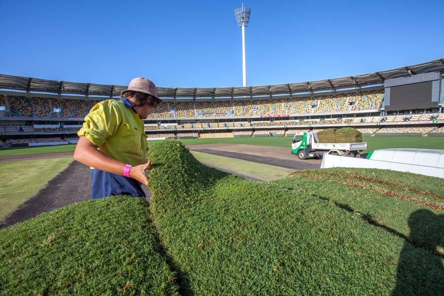 Re-laying turf at the GABBA with TifTuf Tur