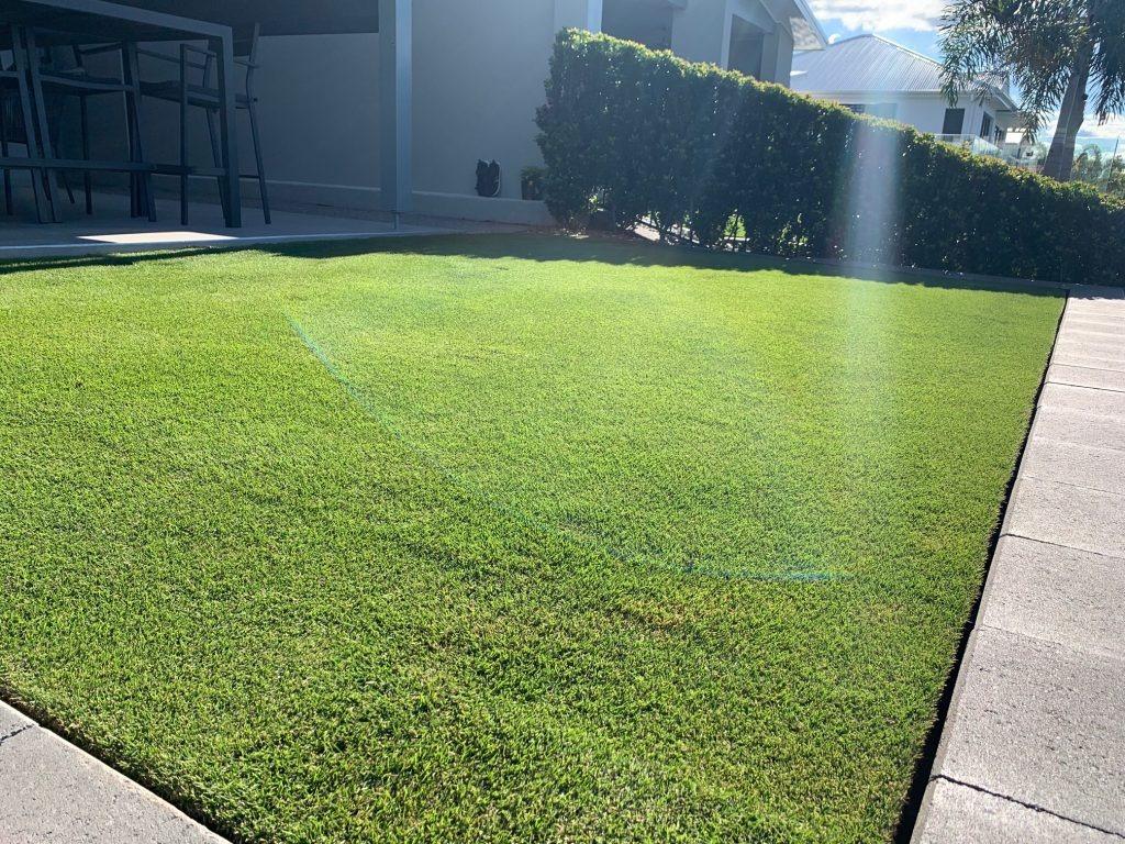 Exceed Liquid Lawn Fertiliser - Lawn Solutions Australia